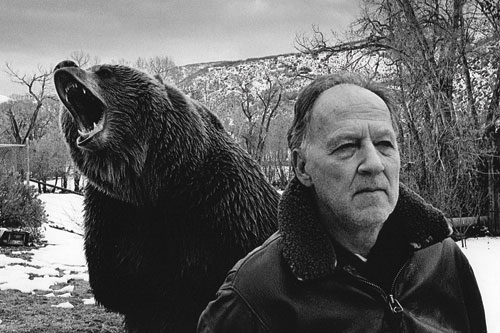 Grizzly Man Werner Herzog